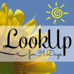 Look Up for 31 Days series by Pearl Allard