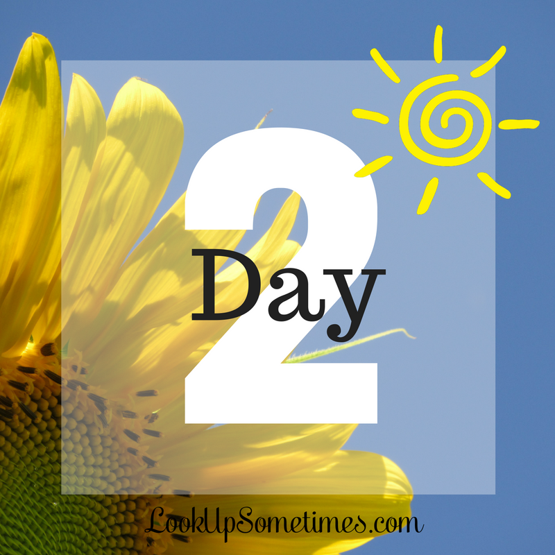 Day 2 - It All Starts With a Promise by Pearl Allard (Look Up for 31 Days)